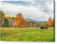 Acrylic Print featuring the photograph Fall Colors After The Storm. by Jeff Folger