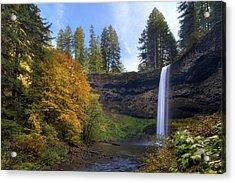Fall Colors At South Falls Acrylic Print by David Gn