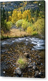 Acrylic Print featuring the photograph Fall Colors At South Fork Bishop Creek by Alexander Kunz