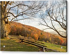 Fall Colors At The Moses Cone Estate Acrylic Print