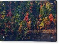 Acrylic Print featuring the digital art Fall Colors by Christopher Meade