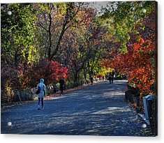 Fall Colors In Central Park 001 Acrylic Print