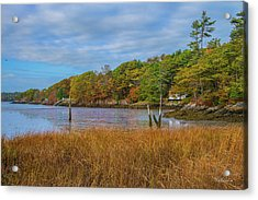 Fall Colors In Edgecomb Too Acrylic Print