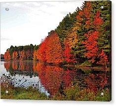 Fall Colors In Madbury Nh Acrylic Print by Nancy Landry