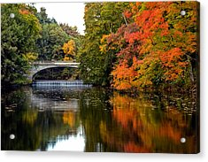 Fall Colors In New York State Acrylic Print by Don Mennig