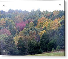 Fall Colors In Rockbridge County Acrylic Print by Eddie Armstrong