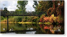 Fall Colors Acrylic Print