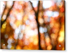 Fall Colors Acrylic Print by Les Cunliffe