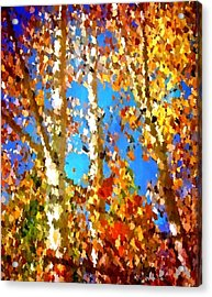 Fall Colors Acrylic Print by Sarah Jane Thompson