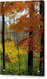 Fall Colors Watercolor Acrylic Print