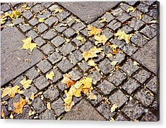Fall Crossroads Acrylic Print by JAMART Photography