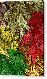 Fall Down Acrylic Print by Tom Romeo
