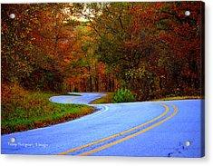 Fall Drive Acrylic Print