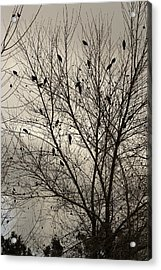 Fall. Evening.blackbirds. Acrylic Print by Viktor Savchenko
