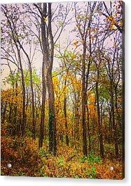 Fall Farewell Acrylic Print