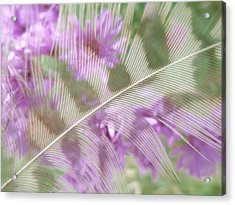 Fall Feather Acrylic Print by Tim Good