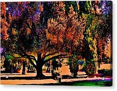 Fall Festival Acrylic Print
