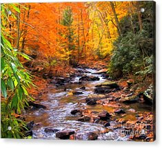 Fall Fire Acrylic Print by Randy Steele