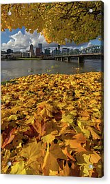 Fall Foliage In Portland Oregon City Acrylic Print