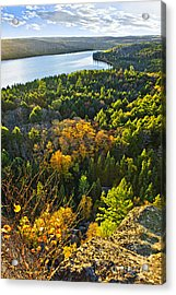 Fall Forest And Lake Top View Acrylic Print by Elena Elisseeva