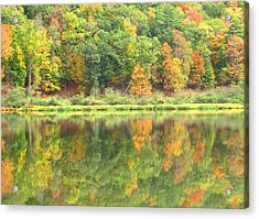 Fall Forest Reflection Acrylic Print by Joshua Bales