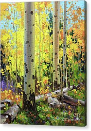 Fall Forest Symphony II Acrylic Print by Gary Kim