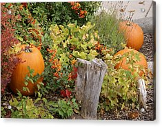 Fall Garden Acrylic Print by Cynthia Powell
