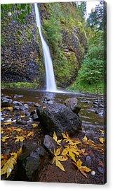 Fall Gorge Acrylic Print by Jonathan Davison