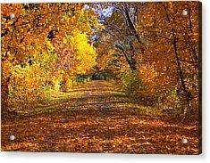 Fall Acrylic Print by Gwen Allen