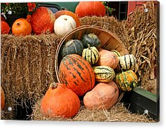 Fall Harvest Acrylic Print by Frank Russell