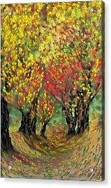 Fall Impression Acrylic Print by Harry Dusenberg
