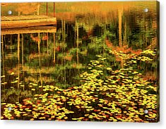 Acrylic Print featuring the photograph Fall Impressions by Rebecca Hiatt