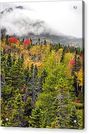 Fall In Baxter State Park Maine Acrylic Print by Brendan Reals