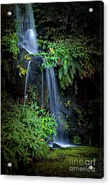 Fall In Eden Acrylic Print by Carlos Caetano