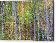Fall In Motion Acrylic Print by Jennifer Ludlum