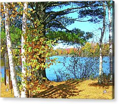 Acrylic Print featuring the photograph Fall In Phillips Wi by Randy Rosenberger