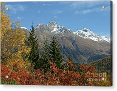 Fall In St. Moritz Acrylic Print by Stan and Anne Foster