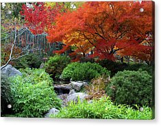 Fall In The Japanese Garden II Acrylic Print by Jim Nelson
