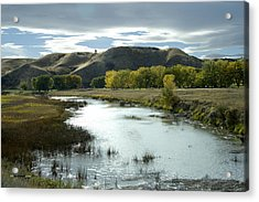 Fall In The River Bottom Acrylic Print