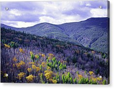 Fall In The White Mountains Acrylic Print