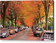 Fall In Vancouver 2017 1 Acrylic Print