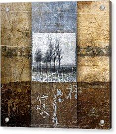 Fall Into Winter Acrylic Print by Carol Leigh