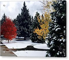 Fall Into Winter Acrylic Print