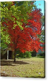 Acrylic Print featuring the photograph Fall Is Coming by Michael Flood