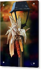 Fall Is Coming Acrylic Print by Theresa Campbell