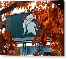 Fall Is Football Acrylic Print