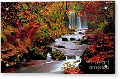 Acrylic Print featuring the painting  Fall It's Here by Rosario Piazza
