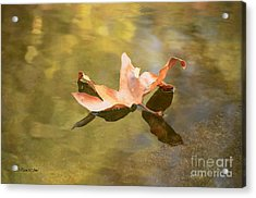 Fall Leaf Floating Acrylic Print