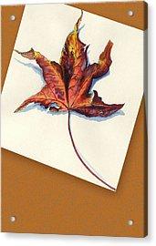 Fall Leaf Acrylic Print