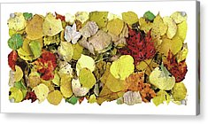 Fall Leaf Vignette Acrylic Print by JQ Licensing